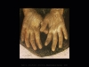 Krista-Nassi- Gold-10